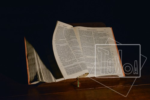 tekoaphotos,bible,parole de dieu,saintes,écritures,écriture
